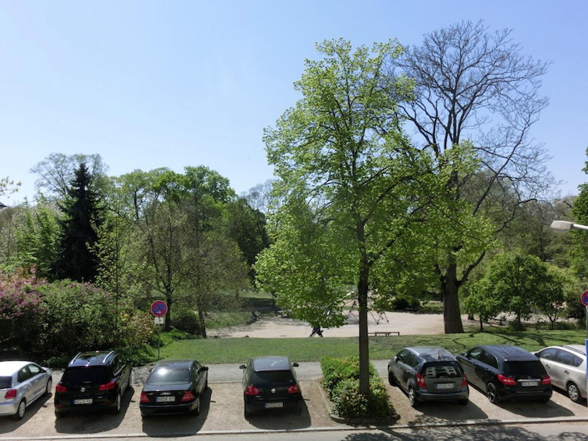 Blick aif Luisenpark